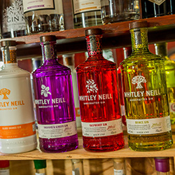 Lots of great gins